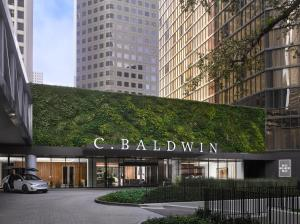 C. Baldwin, Curio Collection by Hilton