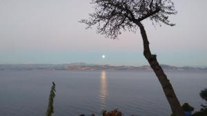 Linamare Argolida Greece