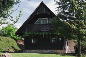 Ferienhaus am Keltenkogel