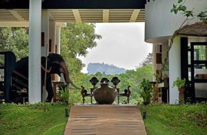 The Elephant Corridor Hotel