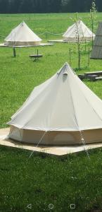 Camping Garden Park