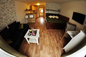 Apartmá Krkonoše - Apartment - Martinice