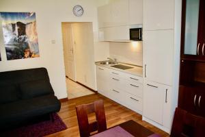 Apartament Kasztanowy Centrum