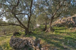 The Art of Mediterranean Living