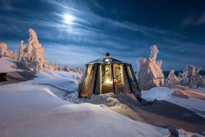 Aurora Igloohotel - Hotel - Jokkmokk