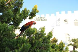 Porto Scoutari Romantic Hotel & Suites (6 of 117)