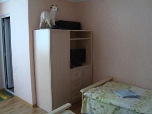 Chicho Guesthouse, Affittacamere  Borjomi - big - 8