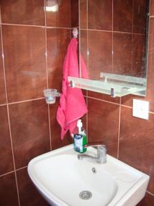 Chicho Guesthouse, Affittacamere  Borjomi - big - 3