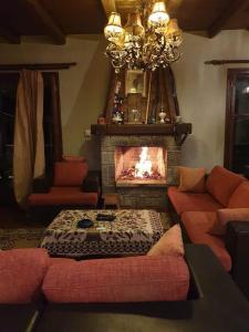 Chalet Iliana - Hotel - Arachova