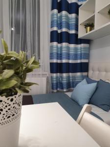 Apartament w centrum Monte Cassino 50
