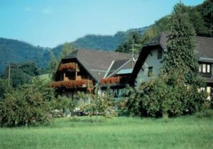 Hotel Tobererhof - Denzlingen