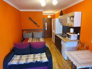 Apartamenty Dzika Orlica