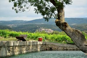 Location gîte, chambres d'hotes Château La Villatade dans le département Aude 11