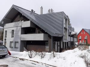 Apartmán Harrachov Ski - Apartment - Harrachov