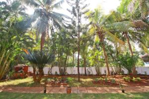 Elite 1 BR Studio in Calangute, Goa, Penziony  Marmagao - big - 15