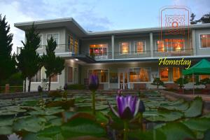 Bagua House Homestay