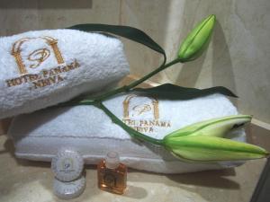 Hotel Panama, Отели  Нейва - big - 11