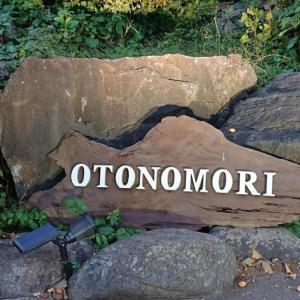 Japanese Culture Stay & Experience OTONOMORI