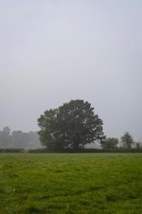 Eckington Manor (30 of 34)