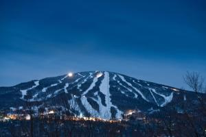 Vantage Point Condominium - Stratton Mountain Resort - Apartment - Stratton Mountain