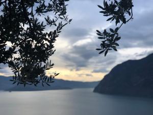 Appartamento con vista sul lago di Iseo e piscina - AbcAlberghi.com