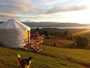 Yurts del Taique ~Mirador~ - Hotel - Puyehue
