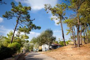 Location gîte, chambres d'hotes Village Vacances Le Petit Bec dans le département Vendée 85