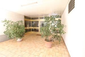 Studio Martinez Croisette Luxury and terrace 102, Апартаменты/квартиры  Канны - big - 14
