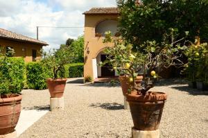 Le case del conventino di Marciano - AbcAlberghi.com