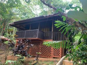 Nature Home Eco-Lodge, Platanillo