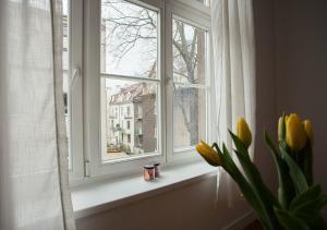 Stylowe mieszkanie w pięknej dzielnicy
