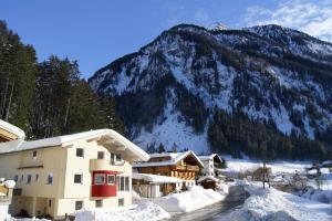 Haus Emilie - Hotel - Ginzling