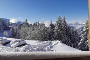 T2 Edelweiss chamrousse 1750 ski montagne alpes