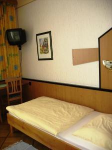 Hotel-Restaurant Fritz Matauschek, Hotely  Vídeň - big - 5