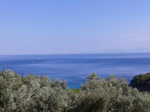 Elia house 2 astoning view among the olive trees Alonissos Greece