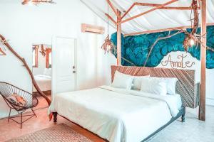 obrázek - Hotel Casa Cormoranes