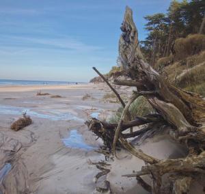 Morskie Domki Kopalino całoroczne
