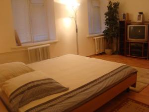 Alex Apartments on Puskinskaya, Appartamenti  Kiev - big - 5