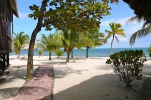 Green Parrot Beach Houses and Resort, Lodge  Maya Beach - big - 67