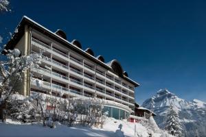 Engelberg Hotels