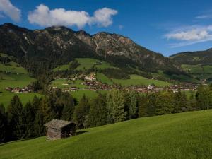 Apartment Haus Schönwies - Hotel - Alpbach