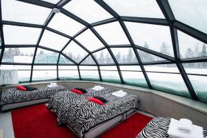 Kakslauttanen Arctic Resort (18 of 123)