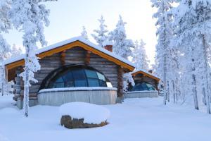 Kakslauttanen Arctic Resort (16 of 123)