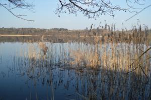 Azyl Apetytu między jeziorami