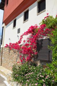 Helianthus Guesthouse Ammouliani Greece