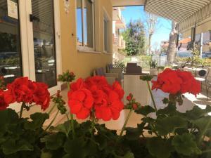 Hotel Villa Rinaldini - AbcAlberghi.com