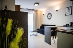 VIP Apartment Old Town Rakowicka Deluxe WAWELOFTS
