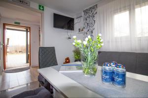 Apartamenty Bieszczady