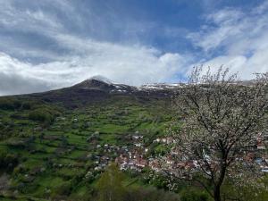 Mountain Hostel Hana - Hotel - Tetovo