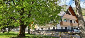 Vila Mojca Apartments Jasna & Jelka - Hotel - Kranjska Gora